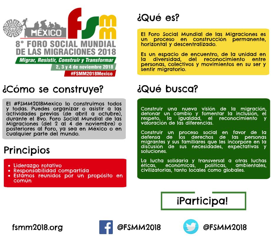 qué es el FSMM